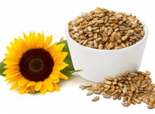 Cashews Or Sunflower Seeds? Can We Replace ?