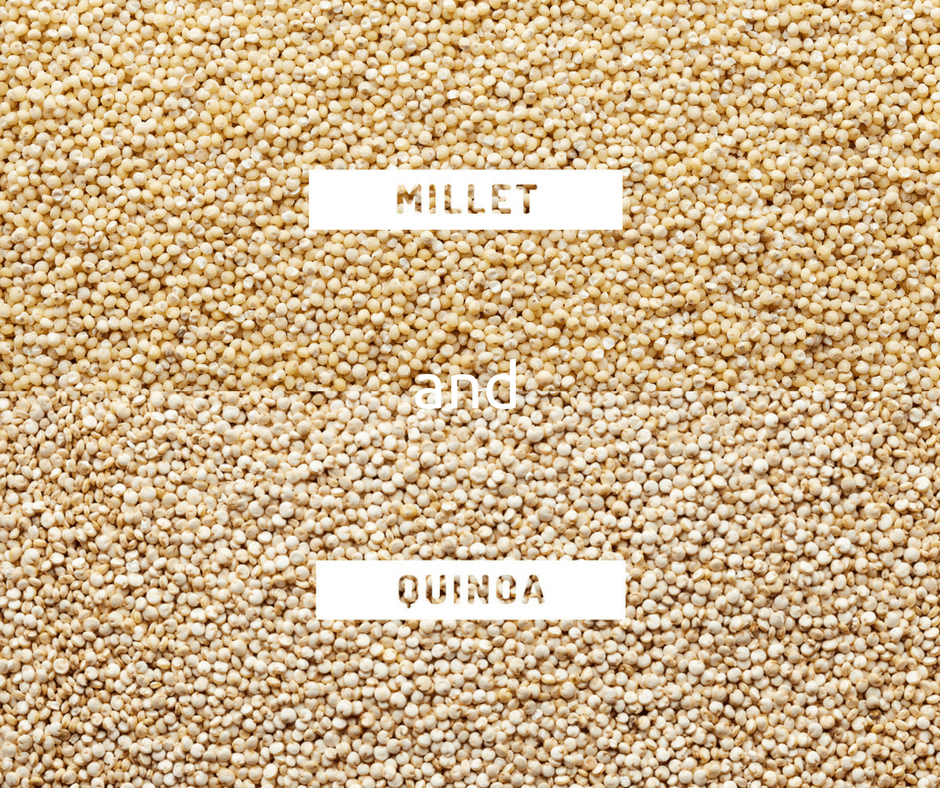 Millet Or Quinoa Which One Of These Healthy Grains To Prefer ?